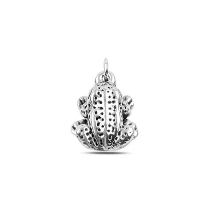 Resim Kurbağa Elektroform Gümüş Bayan Kolye Ucu